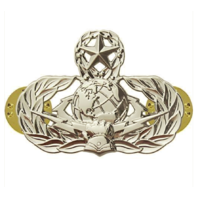 Vanguard AIR FORCE BADGE: CYBERSPACE SUPPORT: MASTER - REGULATION SIZE