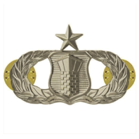 Vanguard AIR FORCE BADGE: AIR TRAFFIC CONTROL: SENIOR - MIDSIZE