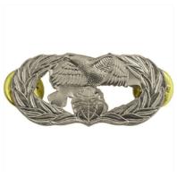 Vanguard AIR FORCE BADGE: TRANSPORTATION - MIDSIZE