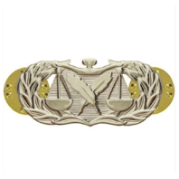 Vanguard AIR FORCE BADGE: PARALEGAL - MIDSIZE