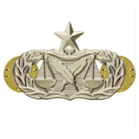 Vanguard AIR FORCE BADGE: PARALEGAL: SENIOR - MIDSIZE