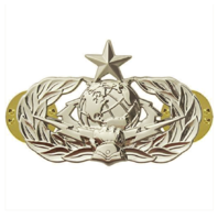 Vanguard AIR FORCE BADGE: CYBERSPACE SUPPORT: SENIOR - MIDSIZE