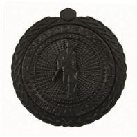 Vanguard ARMY ID BADGE: ARNG RECRUITING AND RETENTION: SENIOR - BLACK METAL