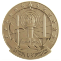 Vanguard ARMY IDENTIFICATION BADGE SUBDUED METAL: SENIOR INSTRUCTOR - BROWN