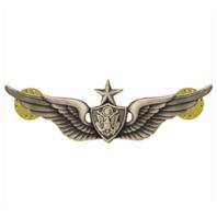 Vanguard ARMY BADGE: SENIOR AIRCRAFT CREWMAN: AIRCREW REGULATION SILVER OXIDIZED