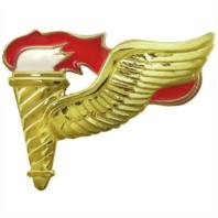 Vanguard ARMY BADGE: PATHFINDER - MIRROR FINISH
