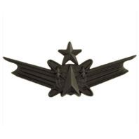 Vanguard ARMY BADGE: SENIOR SPACE COMMAND - REGULATION SIZE, BLACK METAL