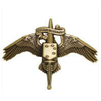 Vanguard MARINE CORPS BADGE MARSOC BRONZE MARINE CORP FORCES SPECIAL OPS COMMAND