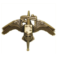 Vanguard MARINE CORPS MINIATURE BADGE: MARSOC BRONZE FORCES SPECIAL OPS COMMAND