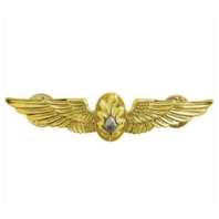 Vanguard NAVY BADGE: FLIGHT SURGEON - REGULATION SIZE