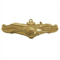 Vanguard NAVY BADGE: INFORMATION DOMINANCE WARFARE OFFICER