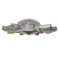 Vanguard Miniature Navy Expeditionary Warfare Specialist Pin- Mirror Finish