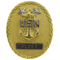 Vanguard NAVY IDENTIFICATION BADGE: FLEET MASTER E9 CPO - REGULATION SIZE