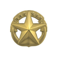 Vanguard NAVY BADGE: COMMAND AT SEA - MINIATURE, GOLD MATTE FINISH