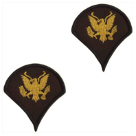 Vanguard ARMY CHEVRON: SPECIALIST 4 - GOLD EMBROIDERED ON GREEN, MALE