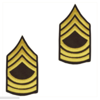 Vanguard ARMY CHEVRON: MASTER SERGEANT - GOLD EMBROIDERED ON GREEN, MALE