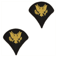 Vanguard ARMY CHEVRON: SPECIALIST 4 - GOLD EMBROIDERED ON BLUE, MALE