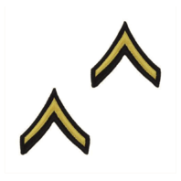 Vanguard ARMY CHEVRON: PRIVATE - GOLD EMBROIDERED ON BLUE, FEMALE
