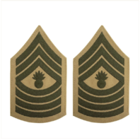 Vanguard MARINE CORPS CHEVRON: MASTER GUNNERY SERGEANT - GREEN ON KHAKI, FEMALE