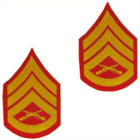 Vanguard MARINE CORPS CHEVRON: STAFF SERGEANT - GOLD EMBROIDERED ON RED, MALE