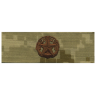 Vanguard NAVY EMBROIDERED BADGE: COMMAND AT SEA - DESERT DIGITAL
