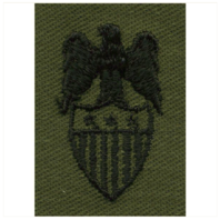 Vanguard ARMY AIDES INSIGNIA: AIDE TO LIEUTENANT GENERAL EMBROIDERED ON SUBDUED