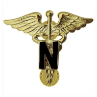 Vanguard ARMY OFFICER BRANCH OF SERVICE COLLAR DEVICE: NURSE - 22K GOLD PLATED