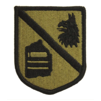 Vanguard ARMY PATCH: DEFENSE LANGUAGE INSTITUTE - EMBROIDERED ON OCP