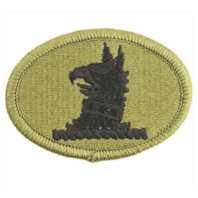 Vanguard ARMY PATCH: DELAWARE NATIONAL GUARD - EMBROIDERED ON OCP