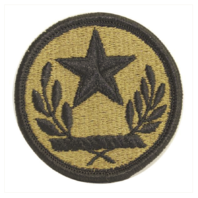 Vanguard ARMY PATCH: TEXAS NATIONAL GUARD - EMBROIDERED ON OCP