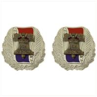 Vanguard ARMY CREST: RECRUITING COMMAND - PROVIDE THE STRENGTH