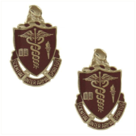Vanguard ARMY CREST: WALTER REED MEDICAL CENTER - SCIENTIA INTER ARMA SPIRITUS