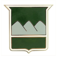 Vanguard ARMY COMBAT SERVICE IDENTIFICATION BADGE (CSIB): 80TH TRAINING COMMAND