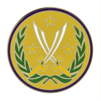Vanguard ARMY COMBAT SERVICE ELEMENT COMBINED JOINT TASK FORCE OP INHERENT RESOLVE