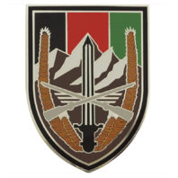 Vanguard ARMY COMBAT SERVICE IDENTIFICATION ELEMENT U.S. FORCES - AFGHANISTAN