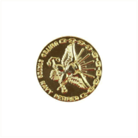 Vanguard NAVY LAPEL PIN: RETIRED 30 YEAR - GOLD