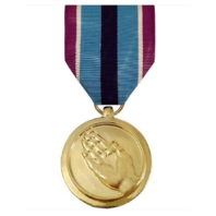 Vanguard FULL SIZE MEDAL: HUMANITARIAN SERVICE - 24K GOLD PLATED
