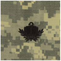 Vanguard ARMY OFFICER BRANCH INSIGNIA: CHAPLAIN CANDIDATE SEW ON - EMBROIDERED ON ACU