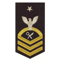 Vanguard NAVY E8 MALE RATING BADGE INTELLIGENCE SPECIALIST SEAWORTHY GOLD, BLUE