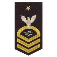 Vanguard NAVY E8 MALE RATING BADGE: INFORMATION TECHNICIAN SPECIALIST - SEAWORTHY GOLD ON BLUE