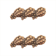 Vanguard RIBBON ATTACHMENTS: THREE OAK LEAF CLUSTERS MOUNTED ON A BAR - BRONZE