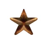 Vanguard NO PRONG RIBBON ATTACHMENTS: 5/16 INCH BRONZE STAR