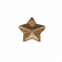 "Vanguard RIBBON ATTACHMENT: 3/16"" BRONZE STAR"