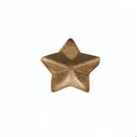 """Vanguard NO PRONG RIBBON ATTACHMENT 3/16"""" BRONZE STAR"""