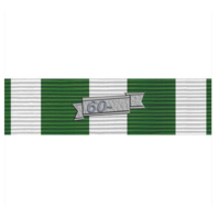 Vanguard Vietnam Campaign Ribbon Unit