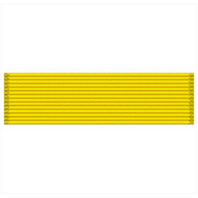 Vanguard RIBBON UNIT #3016 - AIR FORCE ROTC/JROTCGOLD VALOR AWARD