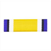 Vanguard RIBBON UNIT #3317 NAVY ROTC RIBBON UNIT: NROTC COLOR GUARD