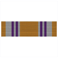 Vanguard ARMY ROTC RIBBON UNIT: N-4-3: AJROTC VOLUNTEER SERVICE
