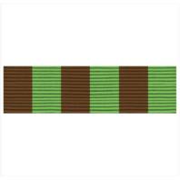 Vanguard ARMY ROTC RIBBON UNIT: R-3-8: DRILL TEAM
