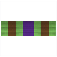 Vanguard ARMY ROTC RIBBON UNIT: R-4-2: MS-II COMPLETION